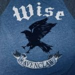 The Sorting Hat says…RAVENCLAW!
