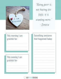 Preview of daily gratitude worksheet