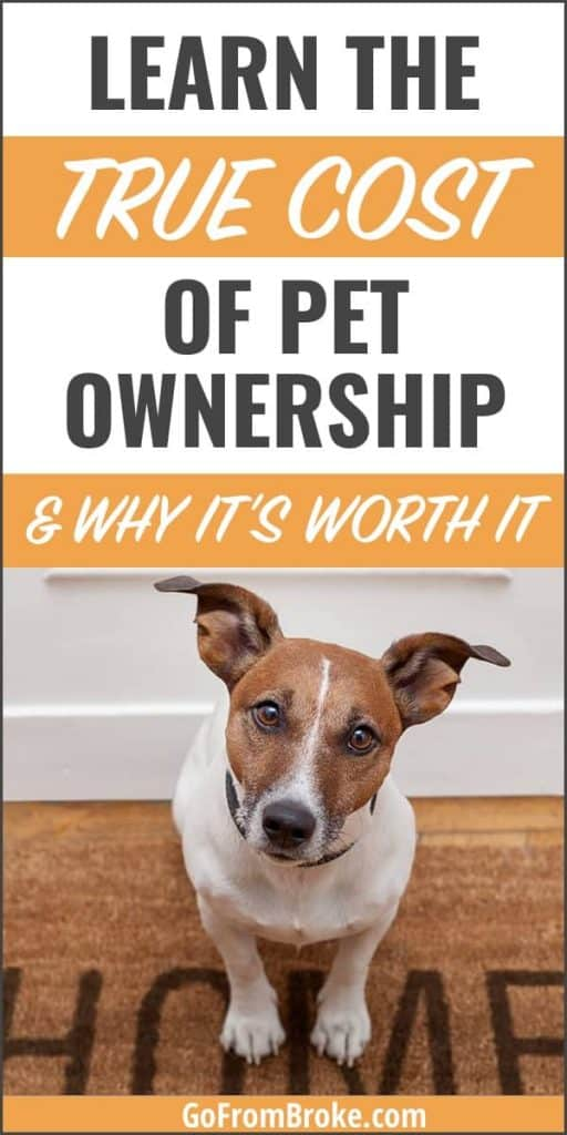 The True Cost of Pet Ownership Pinterest pin